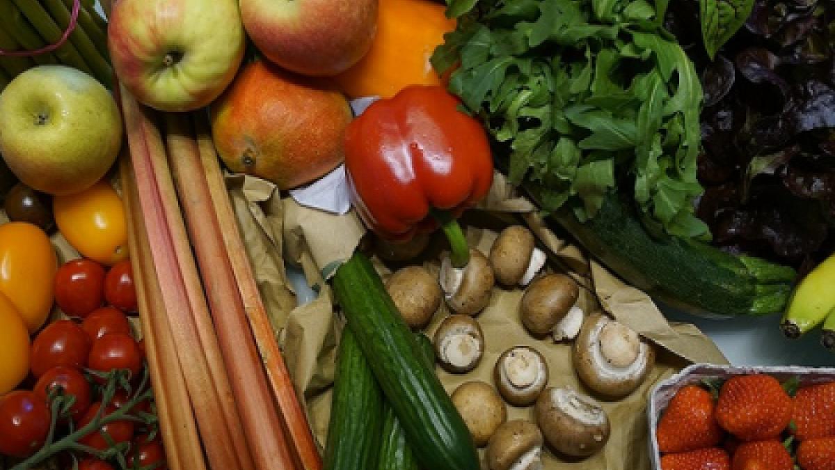 Bezbjednost hrane – Hrana najboljeg kvaliteta